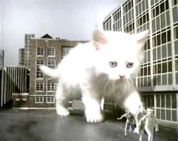 http://www.clubdesmonstres.com/best/img/kittenkonggoodies01.jpg