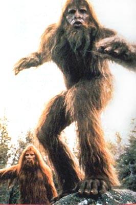 Bigfoot 1987 Disney Movie Of The Week
